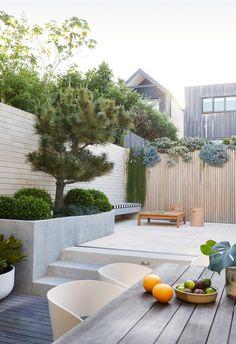 Outdoor Living Areas, Indoor Outdoor Living, Dwarf Mondo Grass, Narrow Garden, Pool Landscape Design, Outdoor Privacy, Low Maintenance Garden, Small Garden Design, Australian Homes