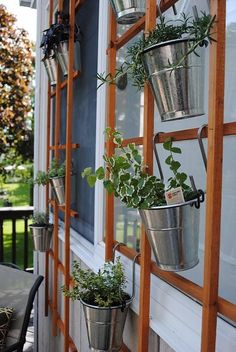 a garden trellis isn't just for roses or ivy, ya know.  A whole herb collection or cute flowers can be hung for a vertical garden effect.  Perfect for small spaces too!