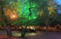 African Boma at Zambezi Point Open Up, Special Day, Just In Case, Heaven, African, Outdoor, Outdoors, Sky, Heavens