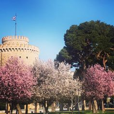 Spring is here! Spring Is Here, Macedonia, One And Only, Tourism, Dolores Park, Landscapes, Places To Visit, Outdoors, Earth