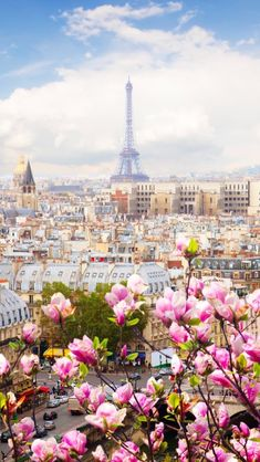 Paris in the Spring!