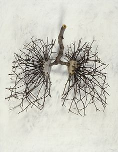 Ian Crawley - God's Prototype: The Nature of Man: Lungs (2002) - Sticks, stones, graphite and gesso on wood