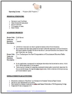 Wonderful Example Of Resume Formats (Page 2)