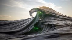 Sea Stills - Ray Collins