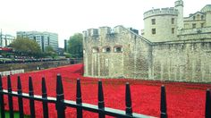 Poppies installation at the Tower of London