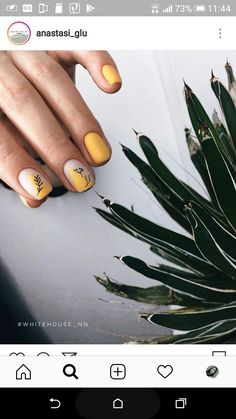 How to choose the shape of nails? - My Nails Cute Acrylic Nail Designs, Cute Acrylic Nails, Cute Nails, Pretty Nails, Hair And Nails, My Nails, Modern Nails, Geometric Nail, Minimalist Nails
