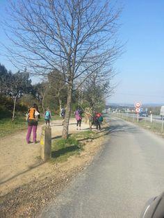 Momentos, señales, peregrinos #caminodesantiago www.Turigrino.com