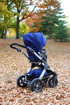 Stokke Trailz Stroller in Central Park NYC