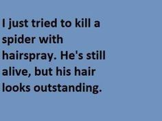 I just tried to kill a spider with hairspray. He's still alive, but his hair looks outstanding.