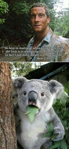 For all the fellow Aussies on pinterest