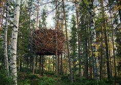 Weaver's Nest by Porky Hefer