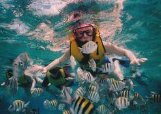 Agencias de viajes mexicanas promueven al país - http://revista.pricetravel.com.mx/agencias-de-viajes/2015/08/13/agencias-de-viajes-mexicanas-promueven-al-pais/