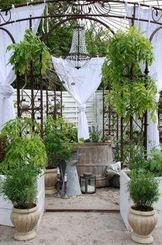 DESDE MY VENTANA: Jardines