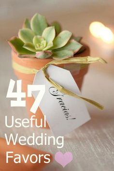 45 Wedding Favors People Will Actually Use, Forever After-- the succulents are seriously cute!-aw