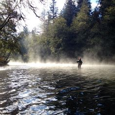 A fly fishing lesson on the Cowichan River on Vancouver Island. What a great way to spend the morning! Thanks to @lbettz for the photo. #explorebc hellobc.com