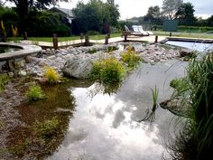 Natural swimming pool, eco-friendly and filtered by plants. A pure and fresh splash for the summer!