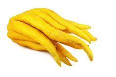 Citron—Buddha's Hand: Kitchen Basics - Harvest to Table
