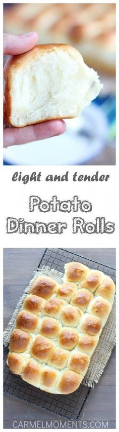 Light and Tender Potato Dinner Rolls  - Light and tender and made with real potato you're sure to want to serve these  with every meal. Easy to make ahead and refrigerate. Perfect for holiday meals!