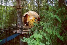 Free Spirit Spheres , город Qualicum Beach, BC