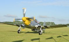 P51d Mustang at Goodwood Revival 2013. It will be back for 2014!