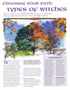 Book of Shadows: #BOS Choosing Your Path: Types of Witches page.
