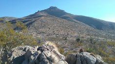 Bishop's cap peak and strawberry cactus.