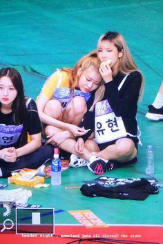 Kpop Girl Groups, Korean Girl Groups, Kpop Girls, Girls In Love, These Girls, K Pop, Jazz, Girls Together, Wattpad