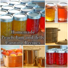 Homemade Peach Jam and Jelly Canning Recipes Homesteading  - The Homestead Survival .Com