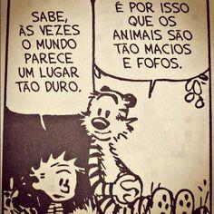 Calvin and Hobbes /Calvin e Haroldo