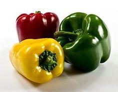 Le poivron (ou piment au Québec) SON HISTOIRE est un groupe de cultivars de l'espèce Capsicum annuum (tout comme certains piments). Ce sont les variétés douces issues de cette espèce par sélection. Ces cultivars doux produisent des fruits de différentes couleurs dont le rouge, le jaune et...