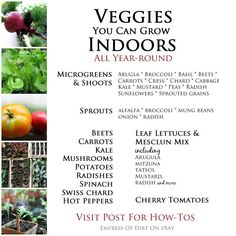 Veggies you can grow indoors - see easy how-tos for Growing veggies and herbs inside all year round. #ad