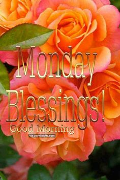 Monday Blessings ~~J Monday Greetings, Good Morning Greetings, Good Morning Wishes, Good Morning Quotes, Monday Wishes, Morning Memes, Happy Monday Quotes, Happy Monday Morning, Today Is Monday