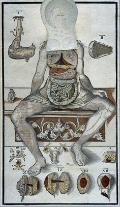Anatomical fugitive sheet (female) with movable flaps which can be raised to show cut-outs of the viscera attached beneath. With accessory figures, including one of newborn infant, and explanatory text in Latin on the right, 1573.