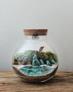 This Company Makes Incredible Micro Ecosystems In Pots And You Will Definitely Want One In Your Home Best Terrarium Plants, Mini Terrarium, Garden Terrarium, Interior Design Plants, Diy Garden Fountains, All The Small Things, Paludarium, Succulents Diy, Glass Containers