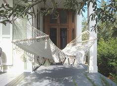 Think adding this to the front porch somehow would be brilliant!  Would add an extra appeal and pop - need palmy plants flanking the front door.  One also needs to be by the hammock.