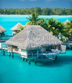 Bora Bora Islands. So excited to go here for our honeymoon!