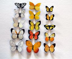 Butterfly Moth Magnets Wholesale Lot of 15 Insects Refrigerator Magnets Kitchen Magnets