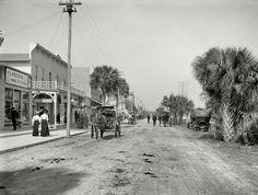 Shorpy Historical Photo Archive :: Daytona Beach, Florida: Florida Souvenirs: 1906