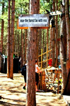 May the forest be with you, always   Photo credit: Candy Carter
