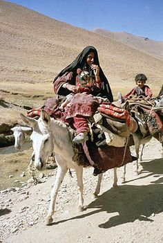 Afghanistan, Kunar Valley, Kuchi nomads on their way to Nuristan