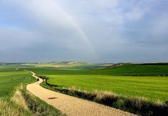 Just getting started on your preparations for the Camino de Santiago? Here are a few ideas, inspirations, and practicalities. Camino Way, Camino Trail, The Camino, Camino Portuguese, Places In Spain, Cathedral Architecture, Fun Places To Go, Happy Trails, Gap Year