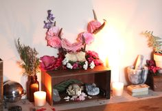 Spring altar with wild roses, red cherry blossoms, and hibiscus flowers.