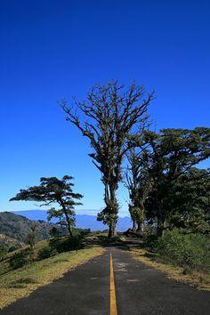 End of the road - Tarbaca, San Jose - Costa Rica
