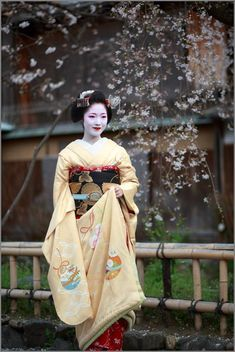 Maiko than flowers! Image of: THE PHOTO DIARY by CANON