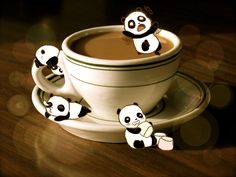 Cup of Panda by inoobmaster #panda #coffee #inoobmaster