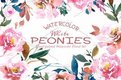 White Peonies- Watercolor Floral Set - Illustrations - 1