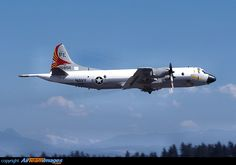 Lockheed P-3 Orion, VP-19, my squadron when I worked in the Bay area,  NAS Moffett Field