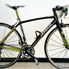 Bike Decal Stickers