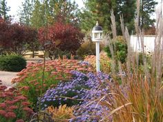 Fall Garden at Sensible Gardening and Living