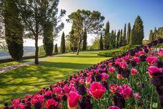 Una corsa nel verde del Parco Giardino di Sigurtà -cosmopolitan.it